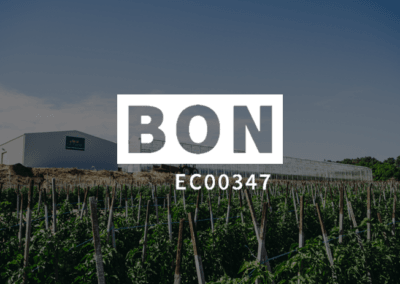 BON: WHS Consulting & In-Field Training